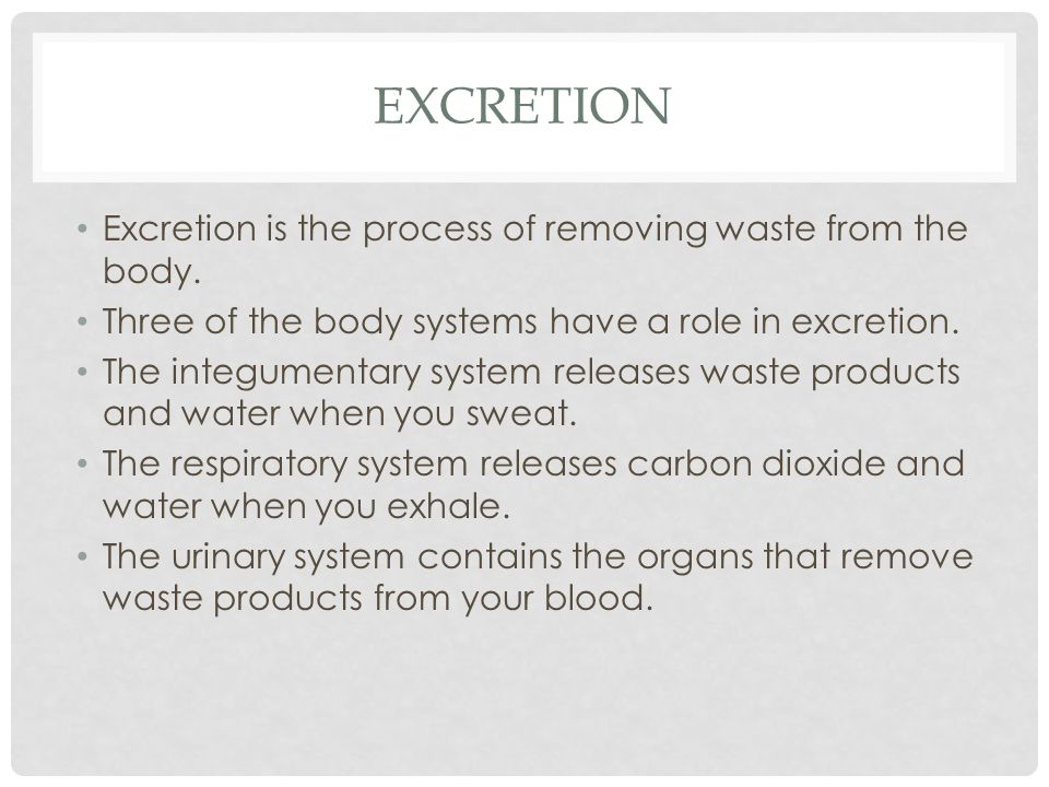 Excretion Excretion is the process of removing waste from the body.