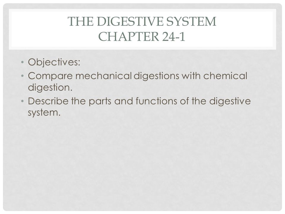 The Digestive System Chapter 24-1