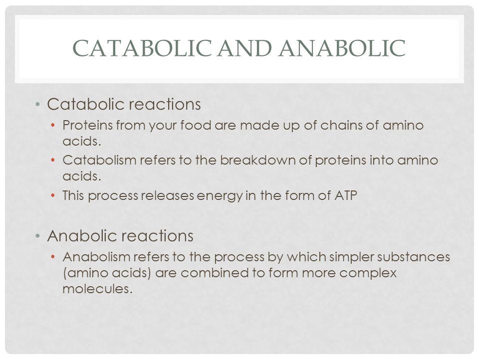 Catabolic and Anabolic