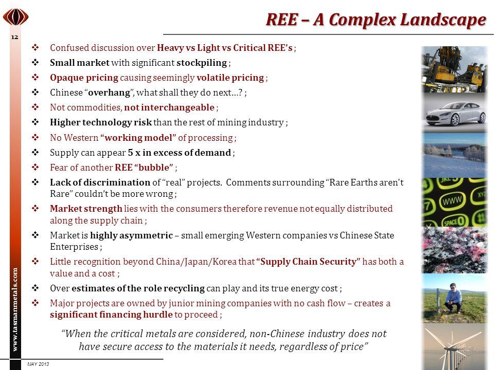 REE – A Complex Landscape