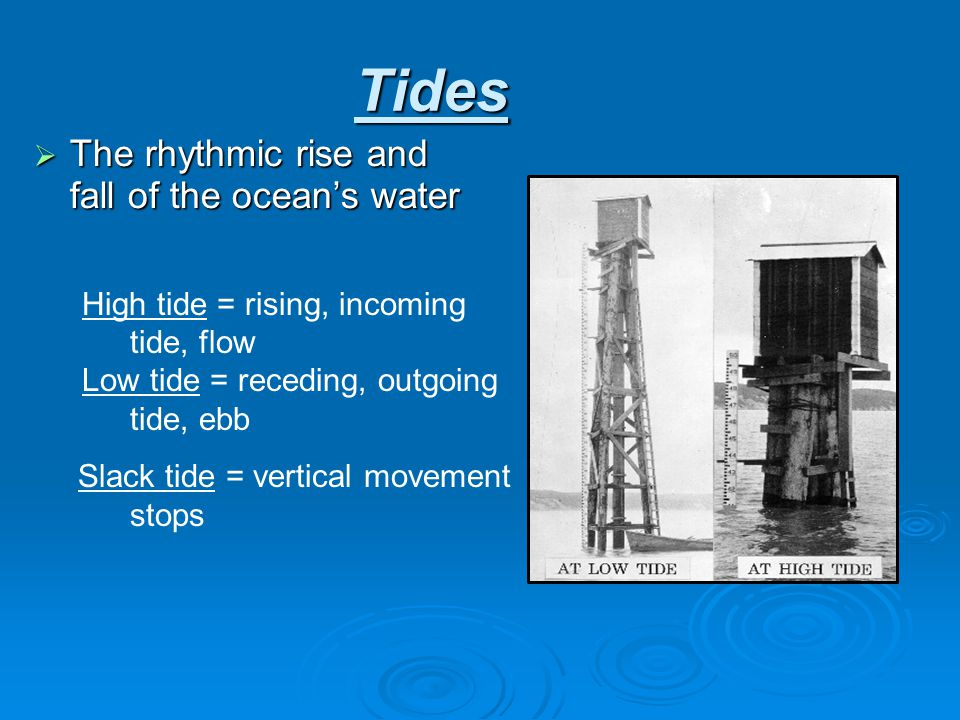 Tides The rhythmic rise and fall of the ocean's water