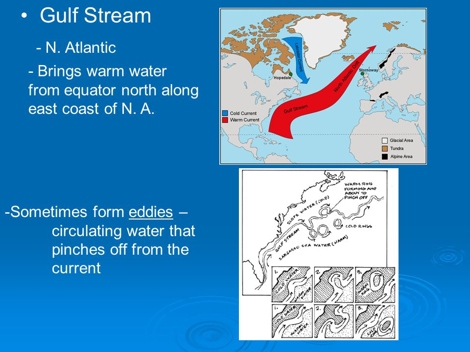 Gulf Stream - N. Atlantic
