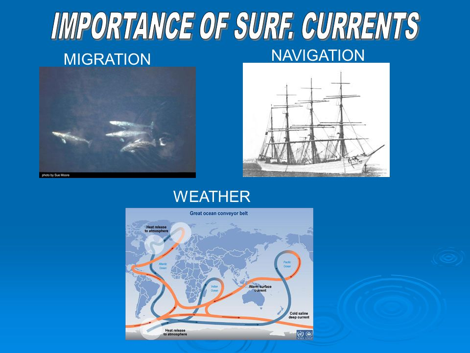 IMPORTANCE OF SURF. CURRENTS