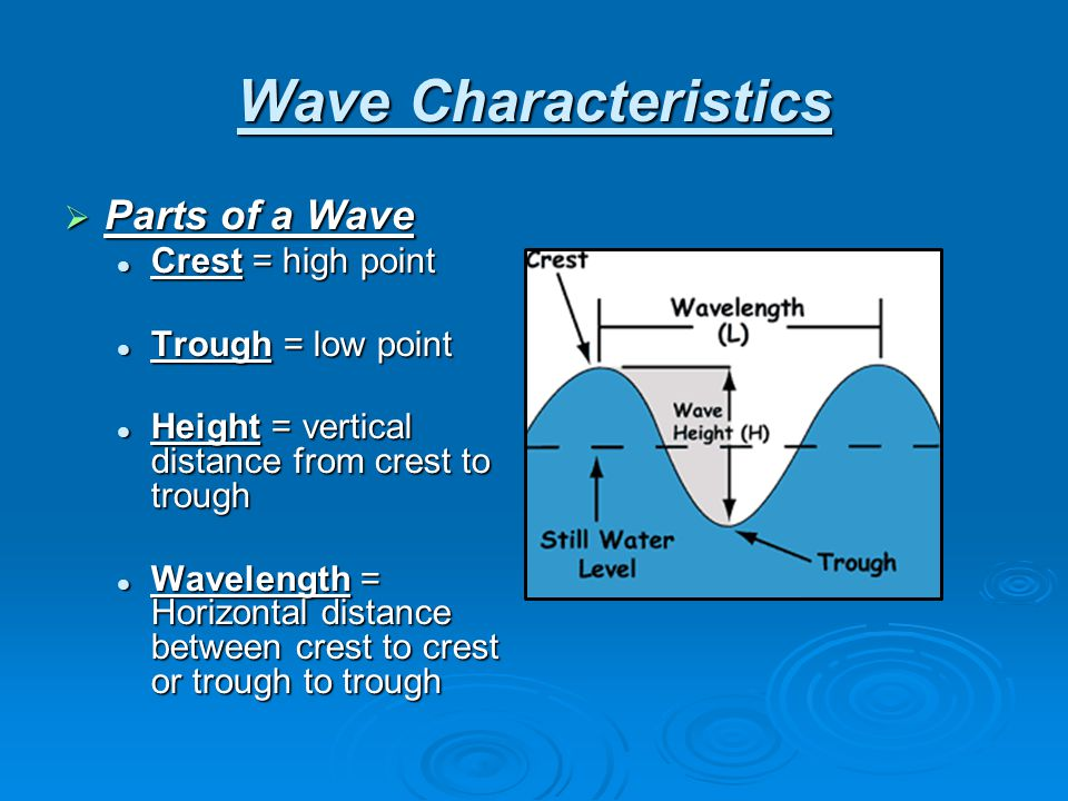 Wave Characteristics Parts of a Wave Crest = high point