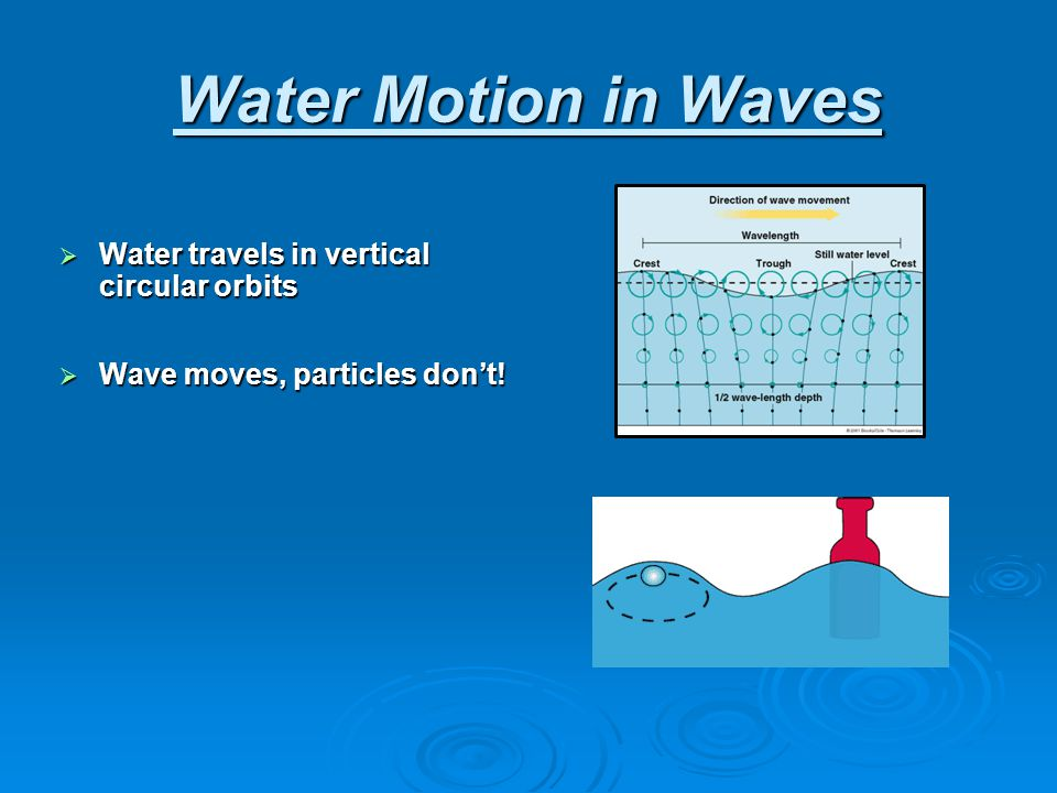 Water Motion in Waves Water travels in vertical circular orbits