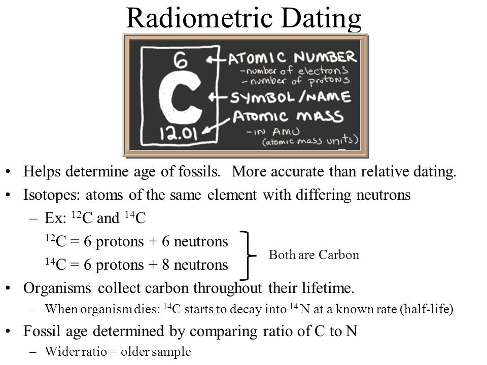 how is radioisotope dating different than relative dating of fossils Start studying relative dating and  by determining the relative percentages of a radioactive parent isotope  make it different from other fossils, .