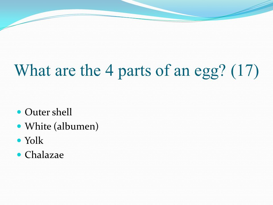 What are the 4 parts of an egg (17)