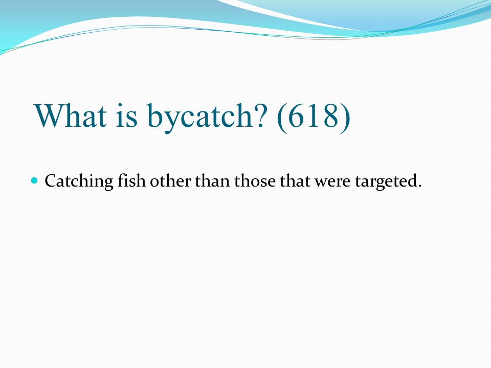What is bycatch (618) Catching fish other than those that were targeted.