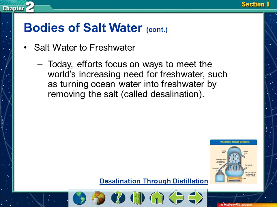 Bodies of Salt Water (cont.)