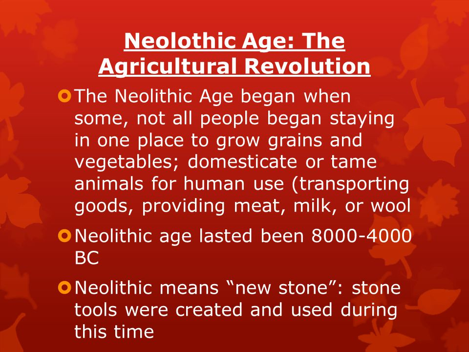 Neolothic Age: The Agricultural Revolution