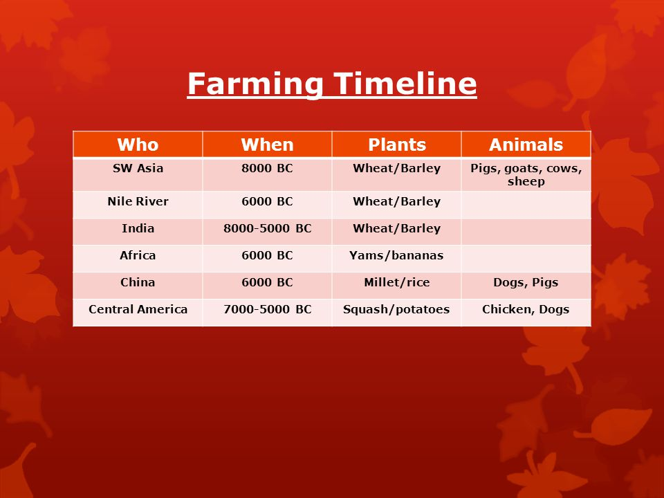 Farming Timeline Who When Plants Animals SW Asia 8000 BC Wheat/Barley