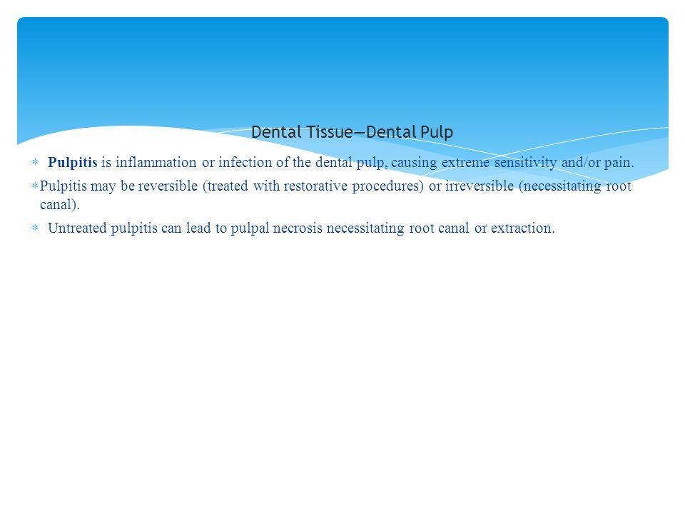Dental Tissue—Dental Pulp