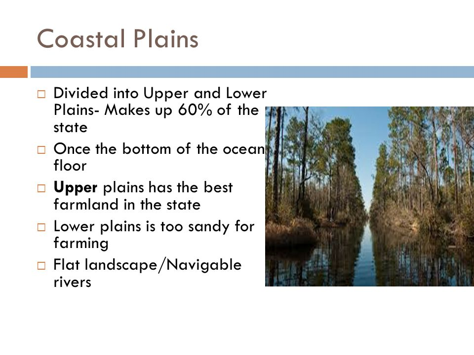 Coastal Plains Divided into Upper and Lower Plains- Makes up 60% of the state. Once the bottom of the ocean floor.
