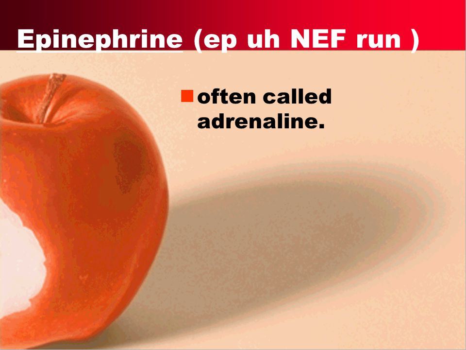Epinephrine (ep uh NEF run )