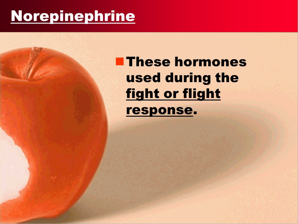 Norepinephrine These hormones used during the fight or flight response.
