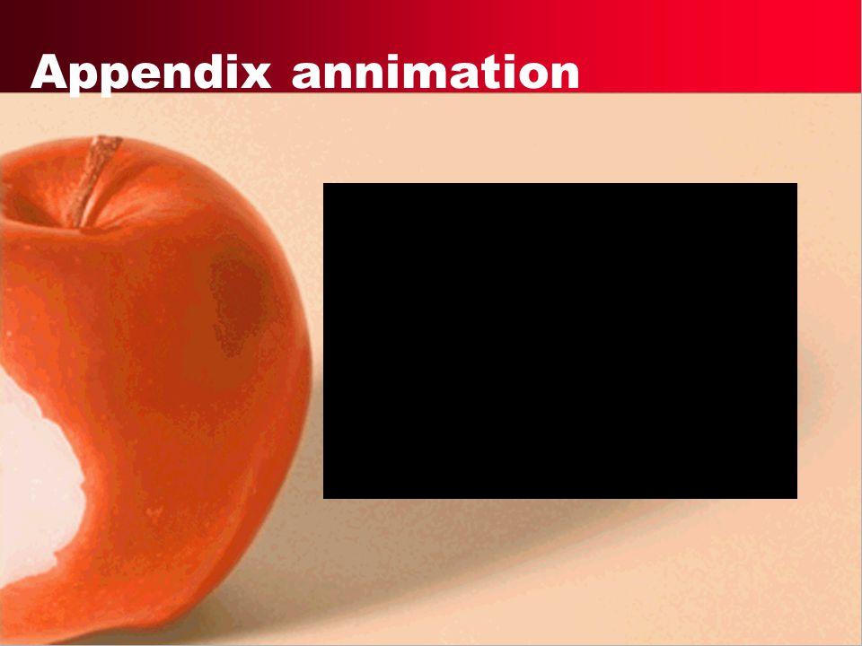 Appendix annimation