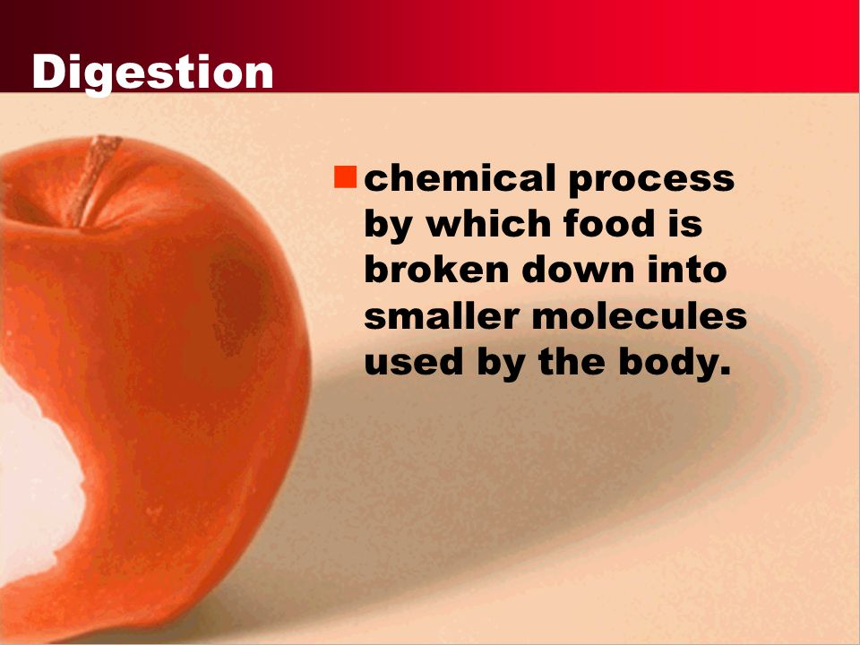 Digestion chemical process by which food is broken down into smaller molecules used by the body.
