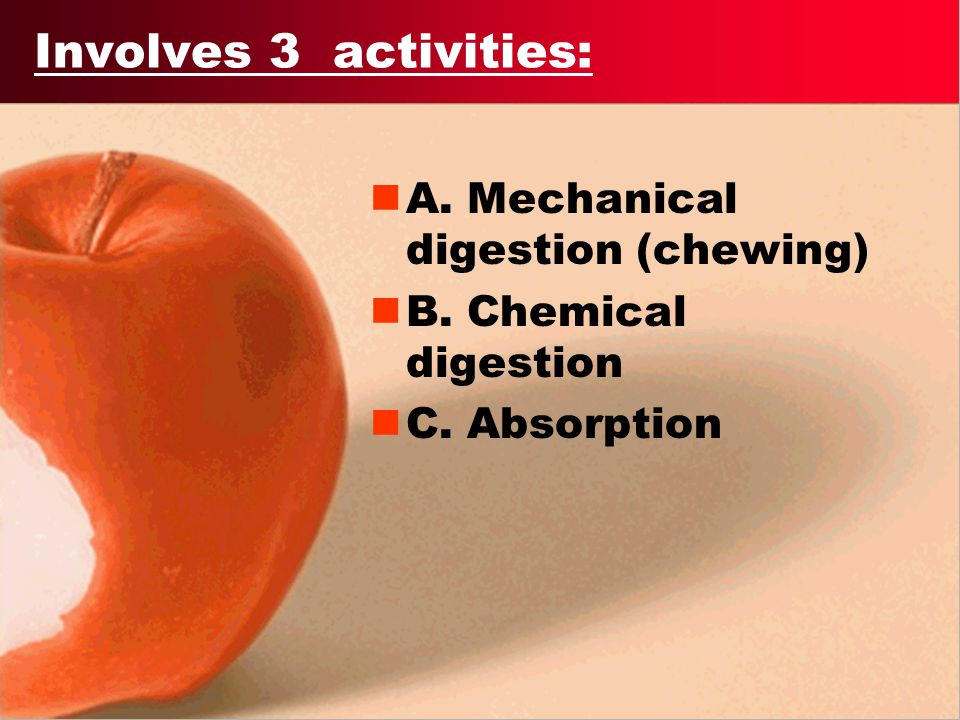 Involves 3 activities: A. Mechanical digestion (chewing)