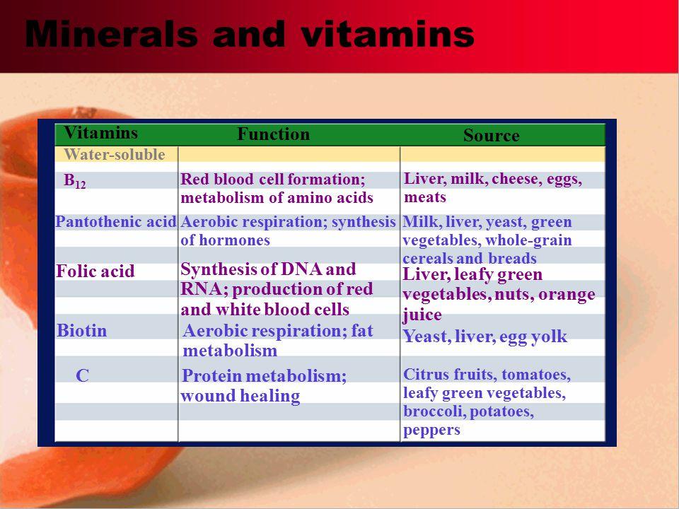 Protein metabolism; wound healing