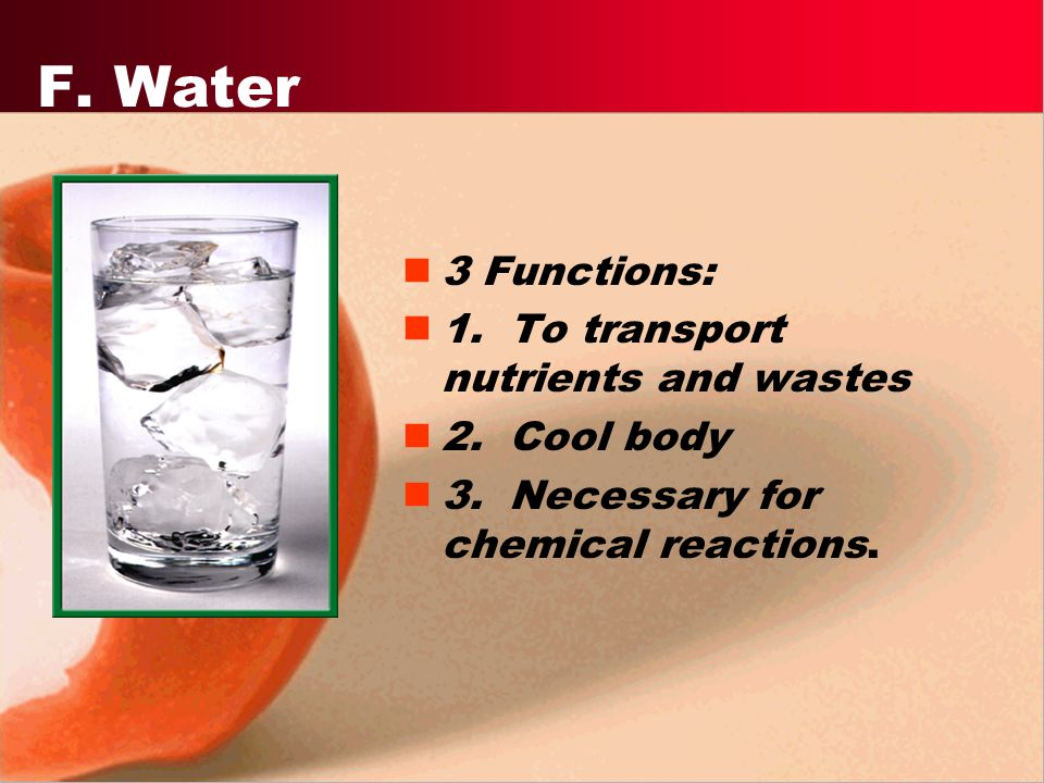 F. Water 3 Functions: 1. To transport nutrients and wastes