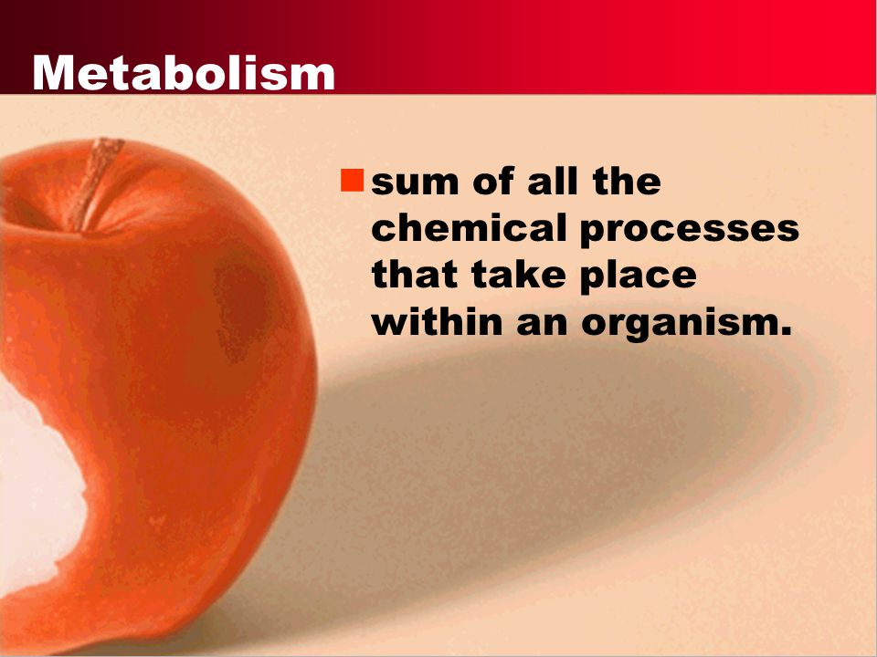 Metabolism sum of all the chemical processes that take place within an organism.