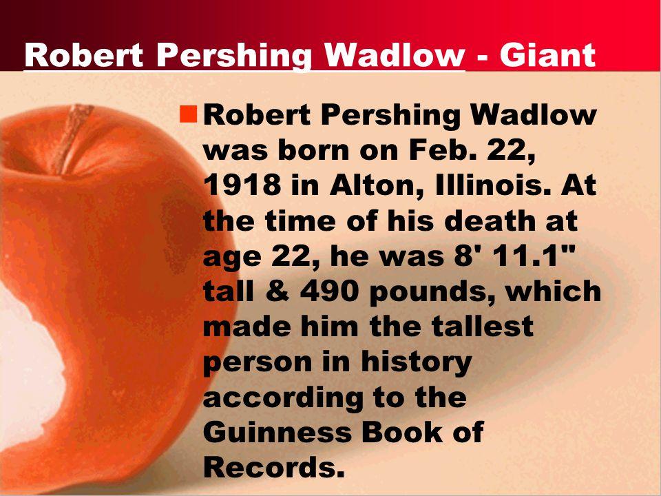Robert Pershing Wadlow - Giant