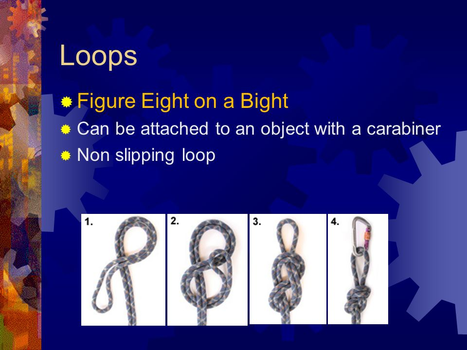 Loops Figure Eight on a Bight