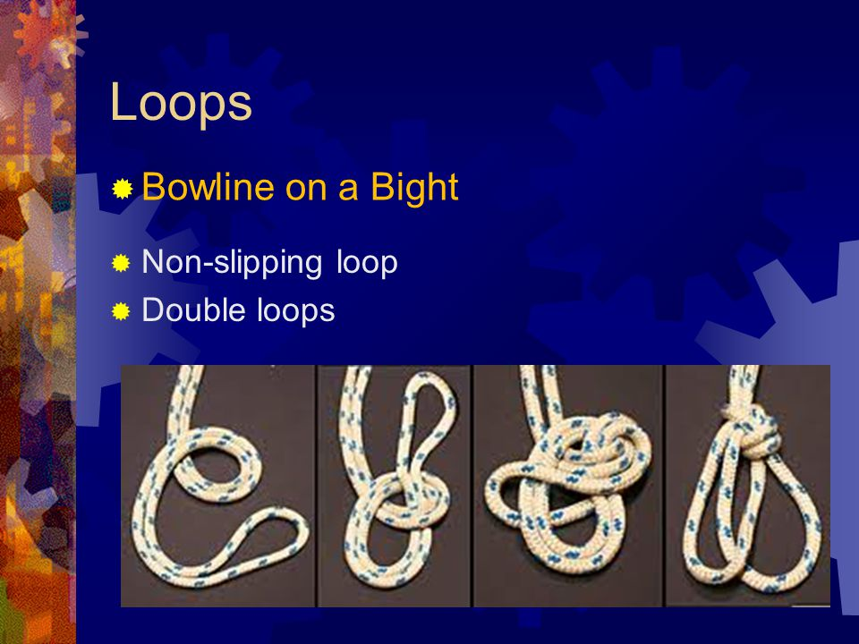 Loops Bowline on a Bight Non-slipping loop Double loops