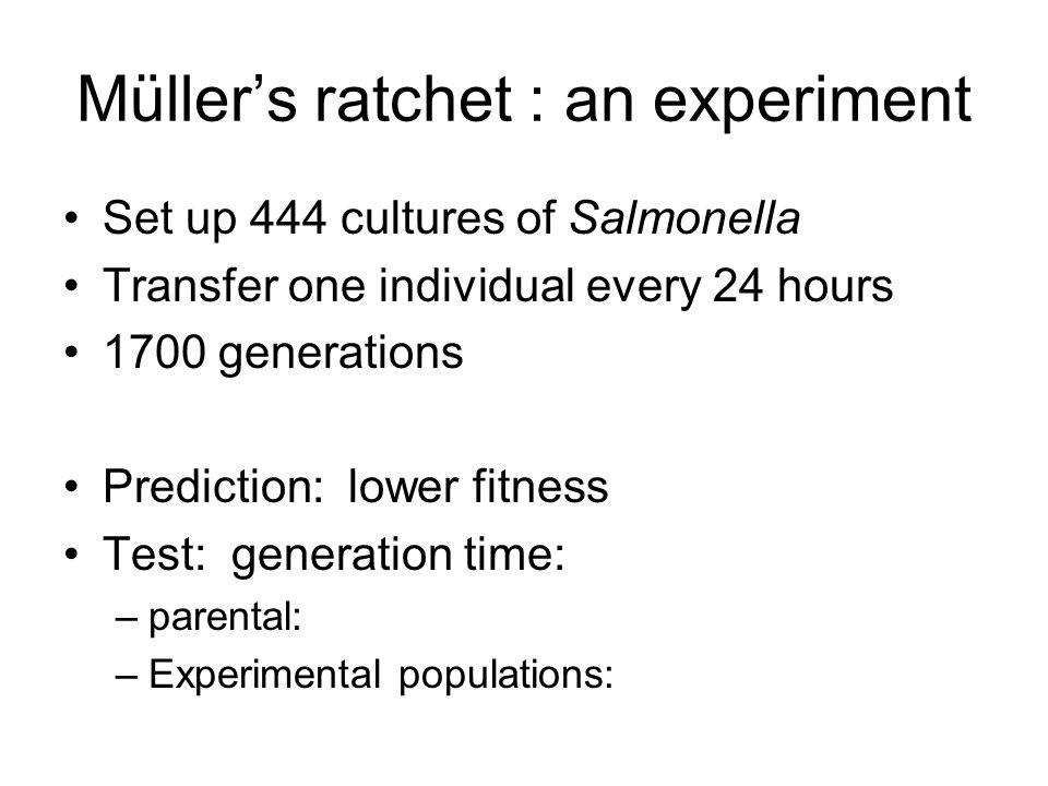 Müller's ratchet : an experiment