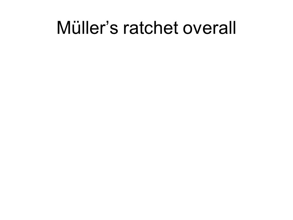 Müller's ratchet overall