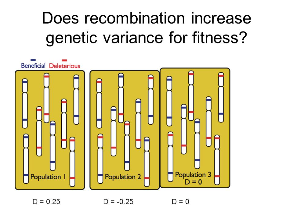 Does recombination increase genetic variance for fitness