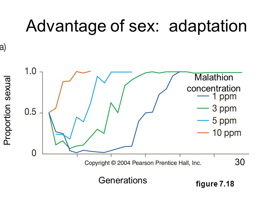 Advantage of sex: adaptation