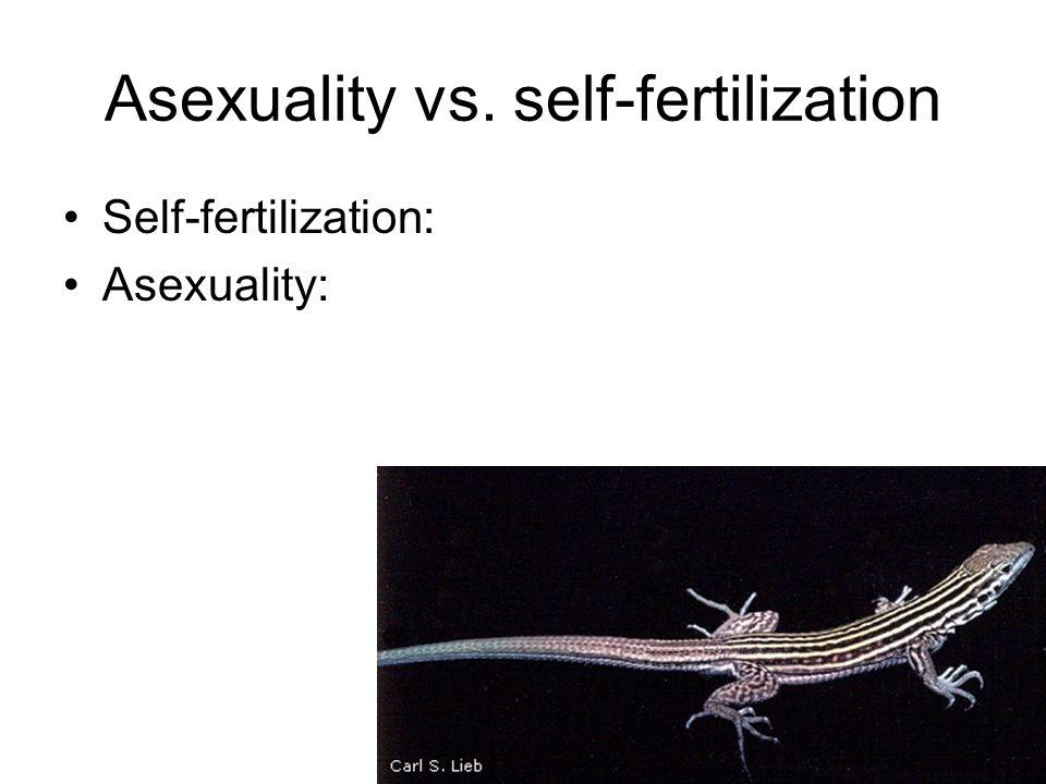 Asexuality vs. self-fertilization