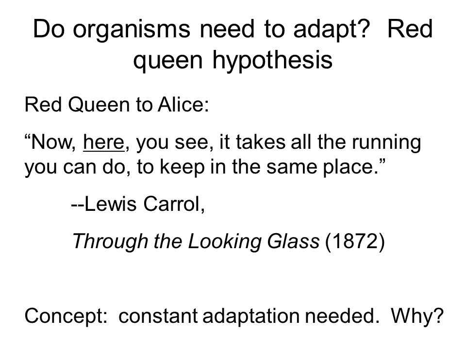 Do organisms need to adapt Red queen hypothesis