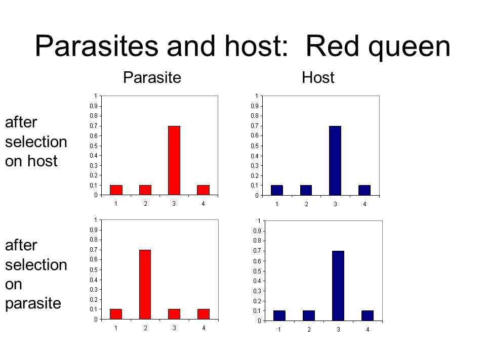 Parasites and host: Red queen