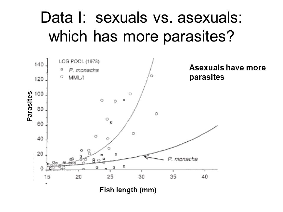 Data I: sexuals vs. asexuals: which has more parasites