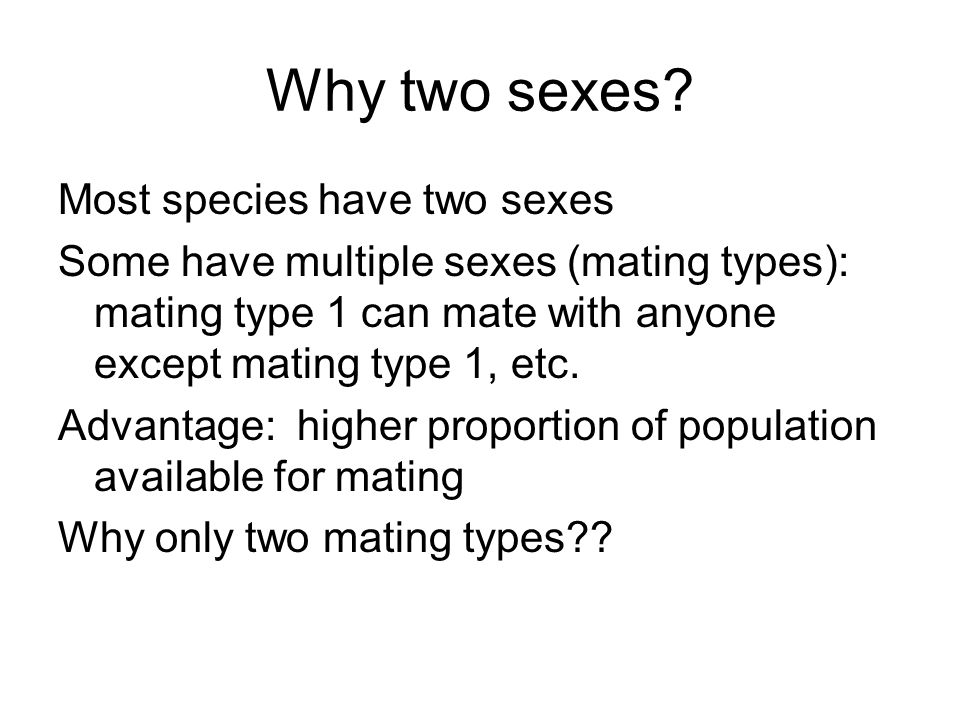 Why two sexes Most species have two sexes