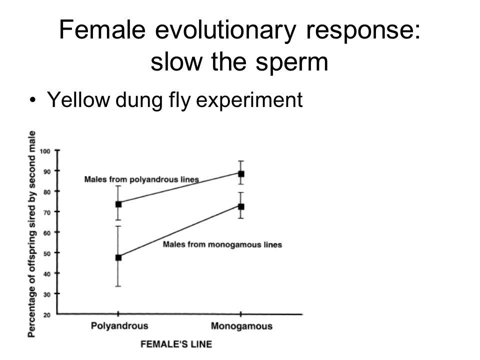 Female evolutionary response: slow the sperm
