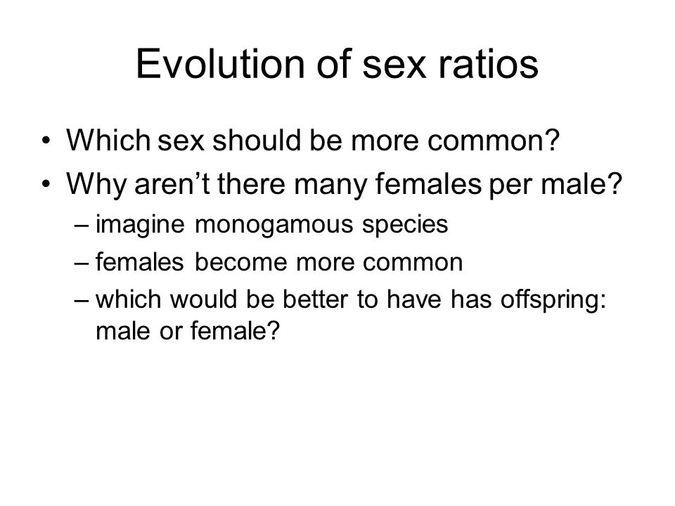 Evolution of sex ratios