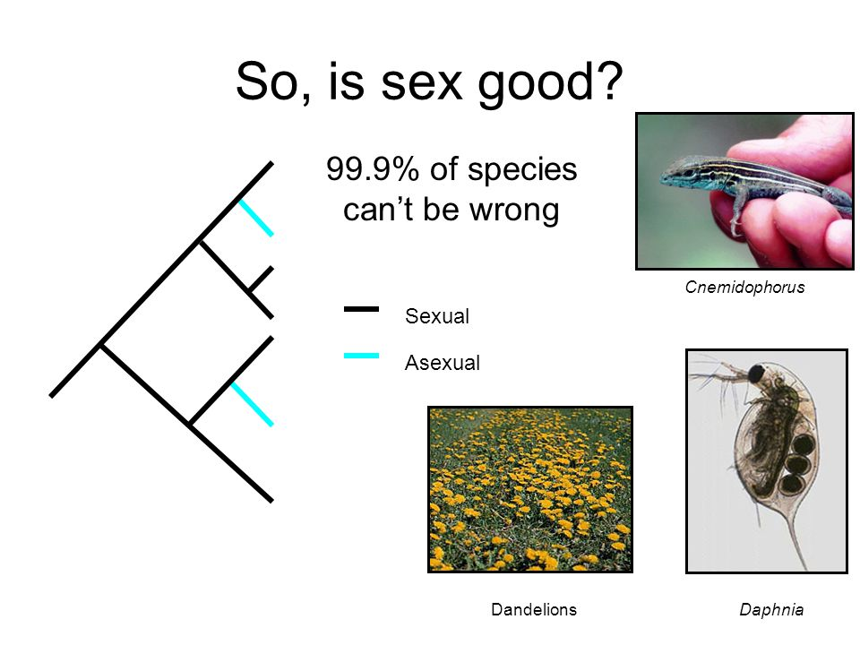 99.9% of species can't be wrong