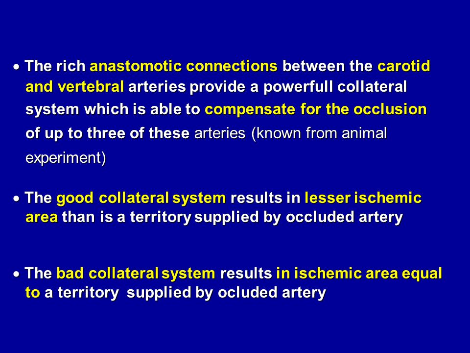 The rich anastomotic connections between the carotid