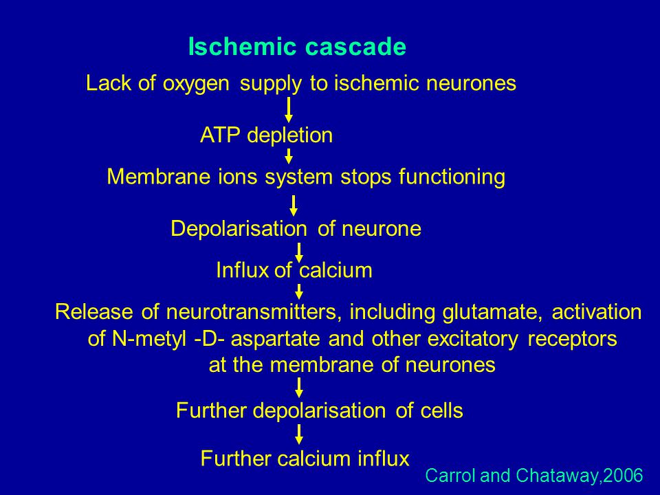 Ischemic cascade Lack of oxygen supply to ischemic neurones