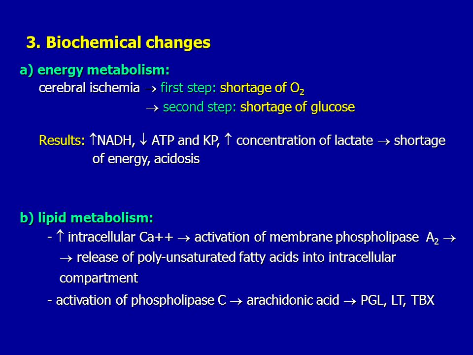 a) energy metabolism: b) lipid metabolism: 3. Biochemical changes