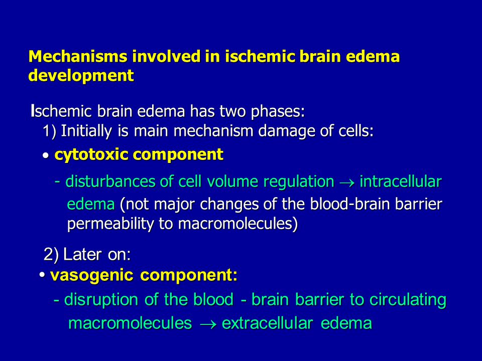 Ischemic brain edema has two phases: