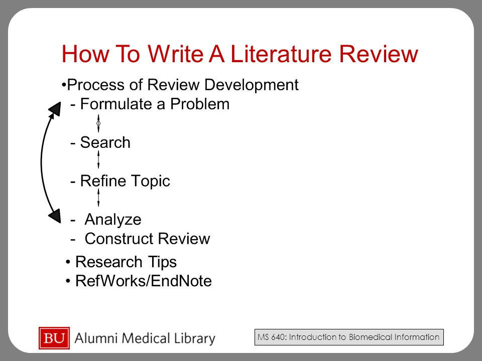 write a literature review apa