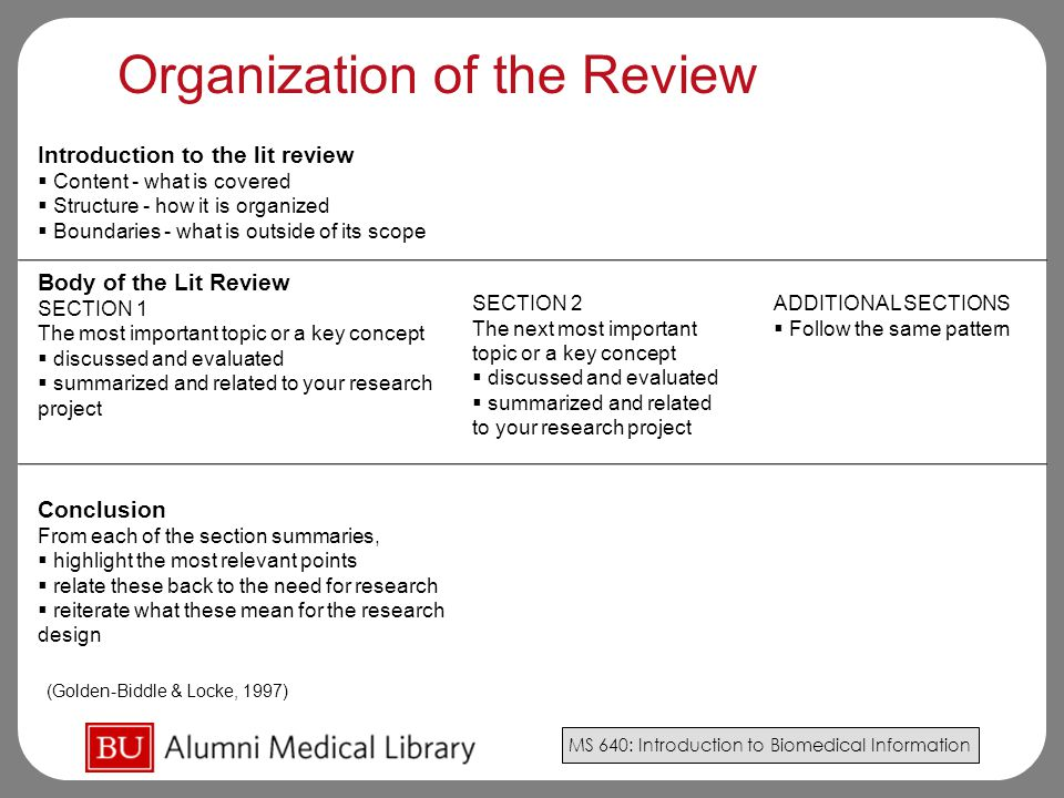 Organization of the Review