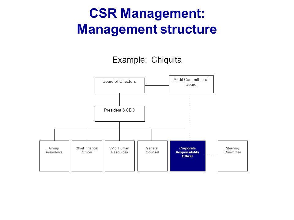 CSR Management: Management structure