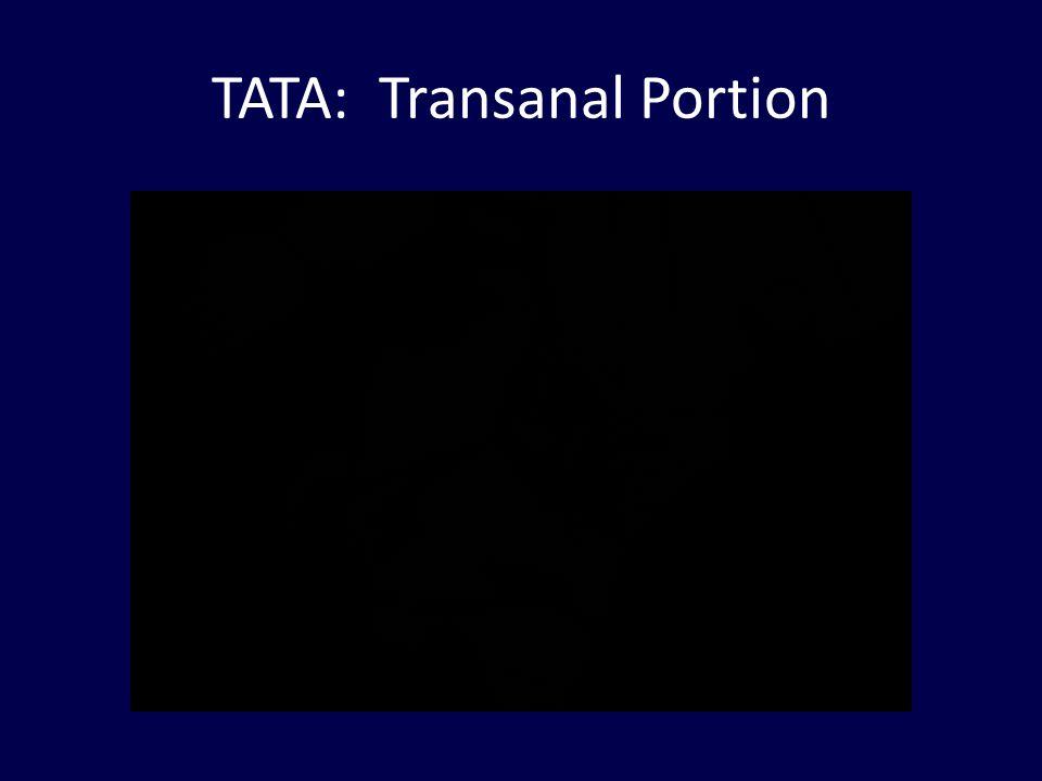 TATA: Transanal Portion