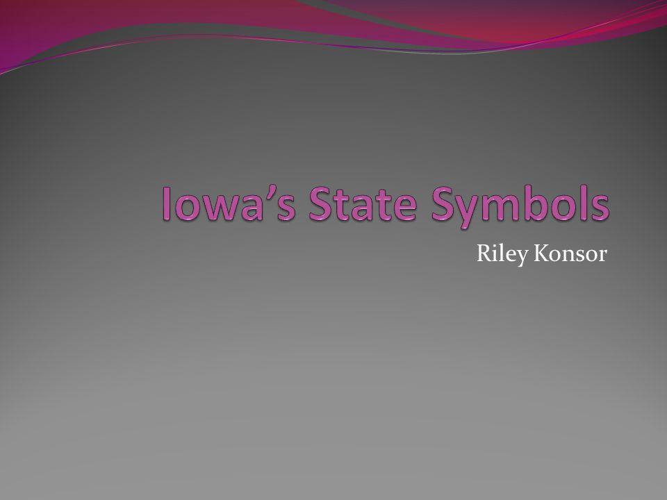 Iowa's State Symbols Riley Konsor