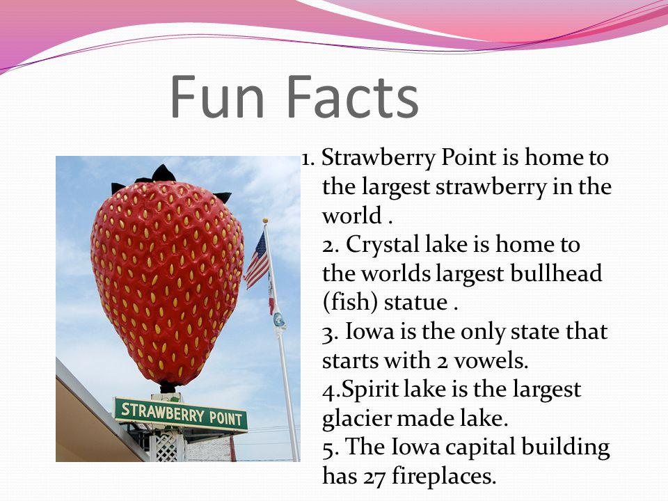 History Of Iowa By Rylie Gittins Facts Ppt Video Online